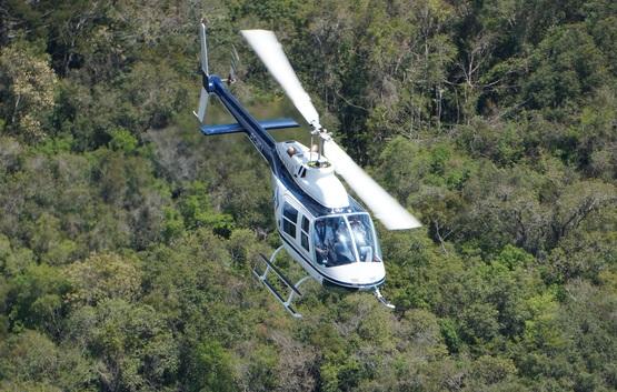Helicóptero na araucária.jpg